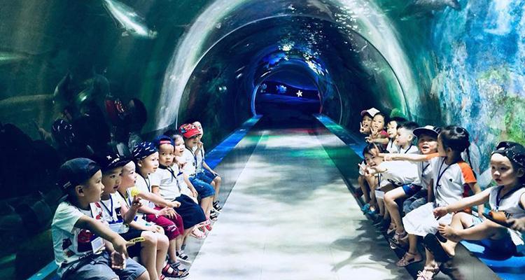 du lịch thiên đường Bảo Sơn e