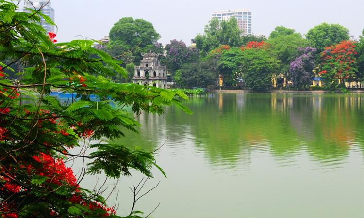 ảnh Hồ Gươm Hà Nội -hoa phượng