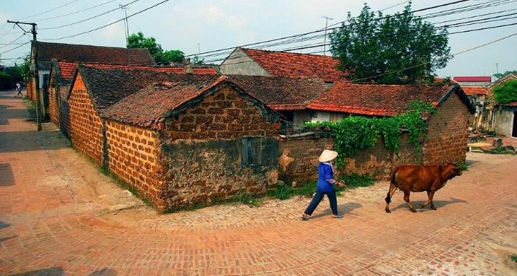Làng cổ Đường Lâm - Hà Nội