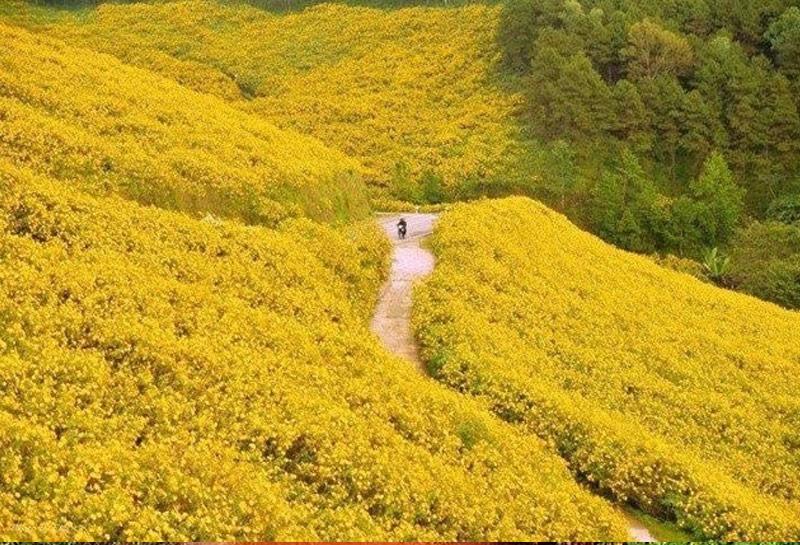 du lịch vườn quốc gia ba vì hà nội