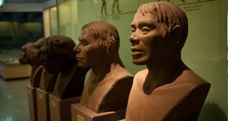 Bảo tàng lịch sử Việt Nam 04