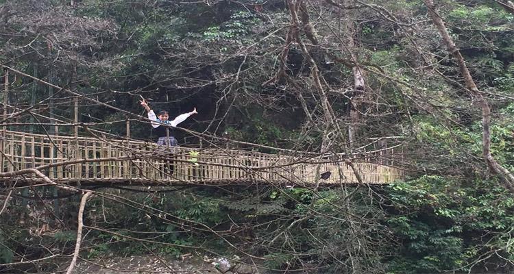 Cầu Mây Sapa là một điểm du lịch hấp dẫn đối với khách tham quan trong và ngoài nước.