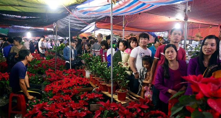 Cây cảnh ở Chợ Viềng Nam Định