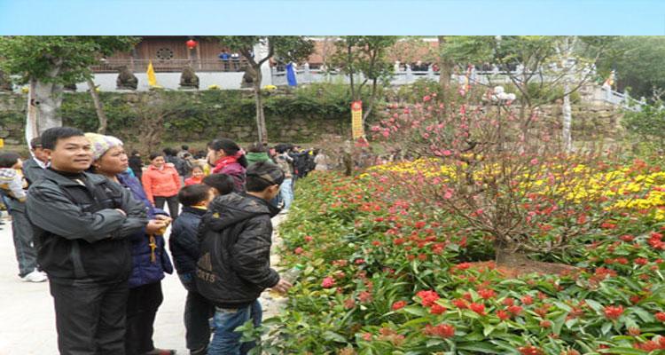 Lễ hội Khán hoa mẫu đơn chùa Phật Tích