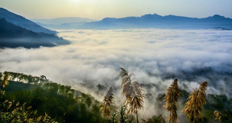 Đèo Pha Đin biển mây