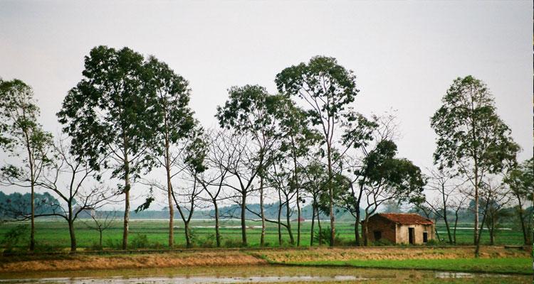 Làng gốm Phù Lãng là làng nghề truyền thống