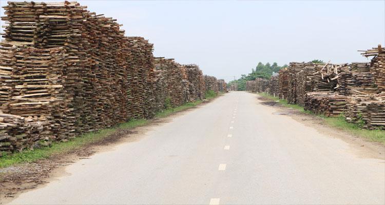 Làng gốm Phù Lãng ở Bắc Ninh