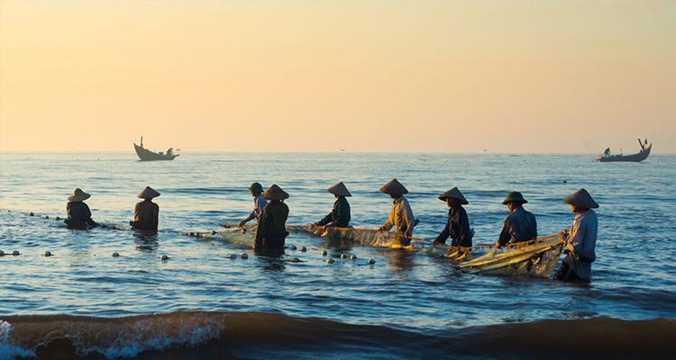 Nhà thờ đổ Hải Lý kéo cá buổi sáng