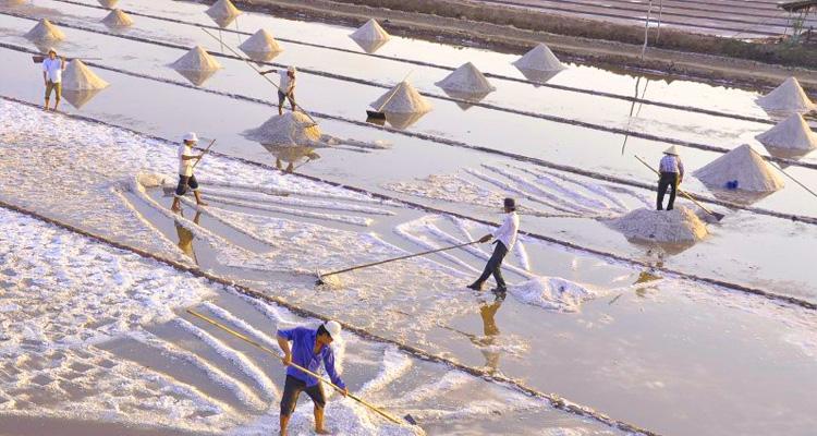 Nhà thờ đổ Hải Lý cánh đồng muối