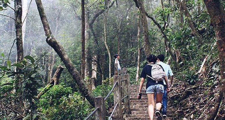 Vườn quốc gia Ba Vì đỉnh Vua