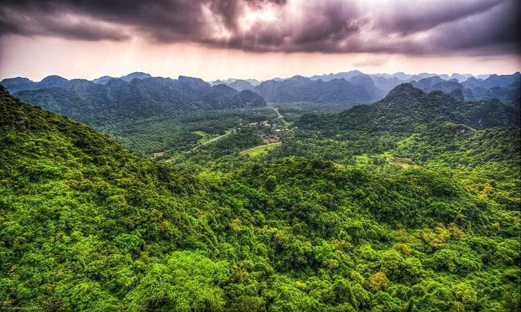Vườn quốc gia Cát Bà - trên đỉnh núi