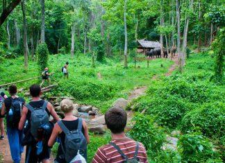 Vườn quốc gia Cúc Phương có gì 06