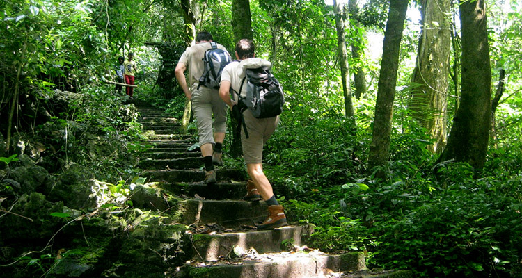 Vườn quốc gia Cúc Phương có gì 05