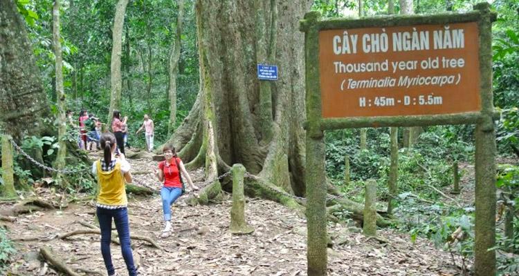Vườn quốc gia Cúc Phương có gì 11