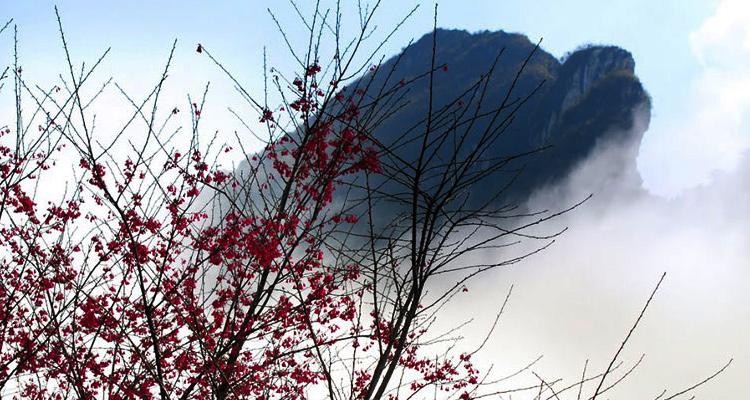 Du lịch Sapa qua 7 địa điểm - núi hàm rồng