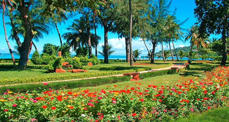 Bãi Trước Vũng Tàu - vườn hoa