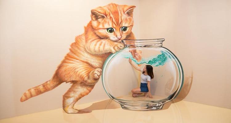Bảo tàng tranh 3D - mèo