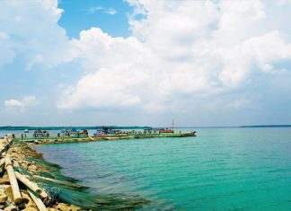 Biển Cần Giờ - toàn cảnh