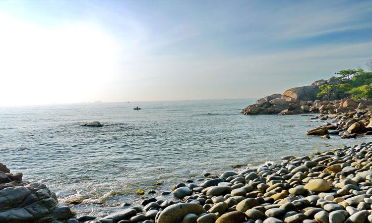 Biển Quy Nhơn - bãi trứng