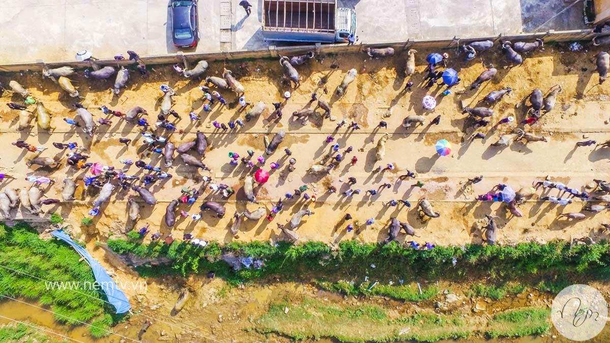 Chợ Bắc Hà Lào Cai 6