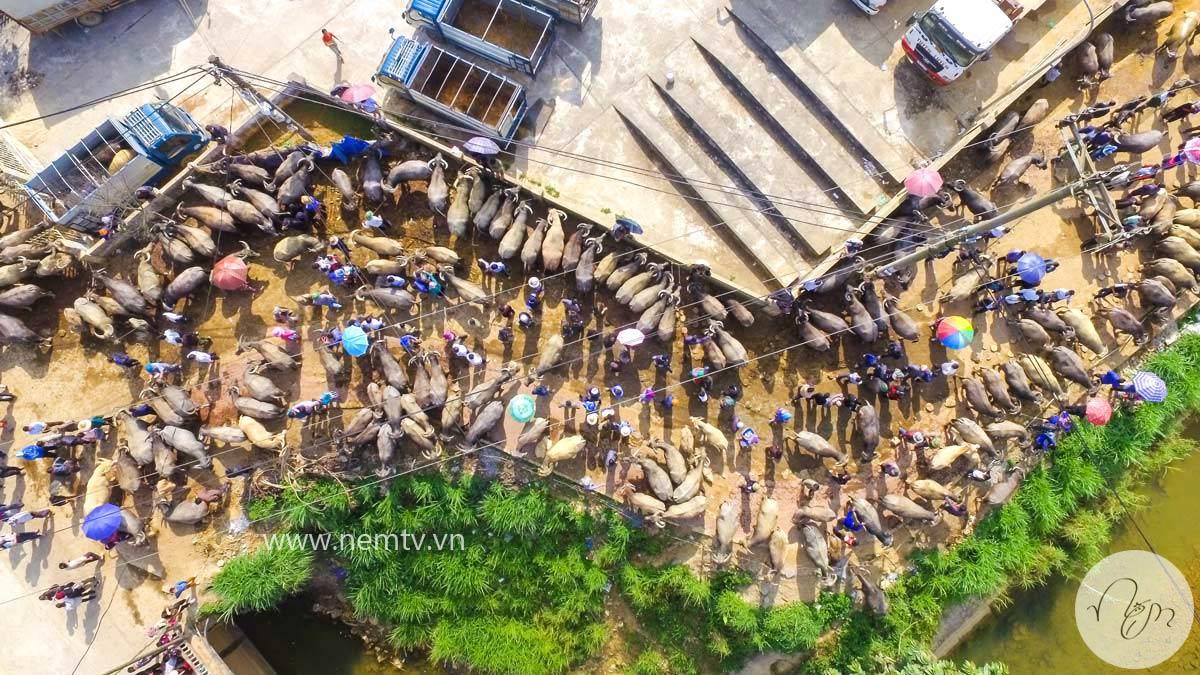 Chợ Bắc Hà Lào Cai 7