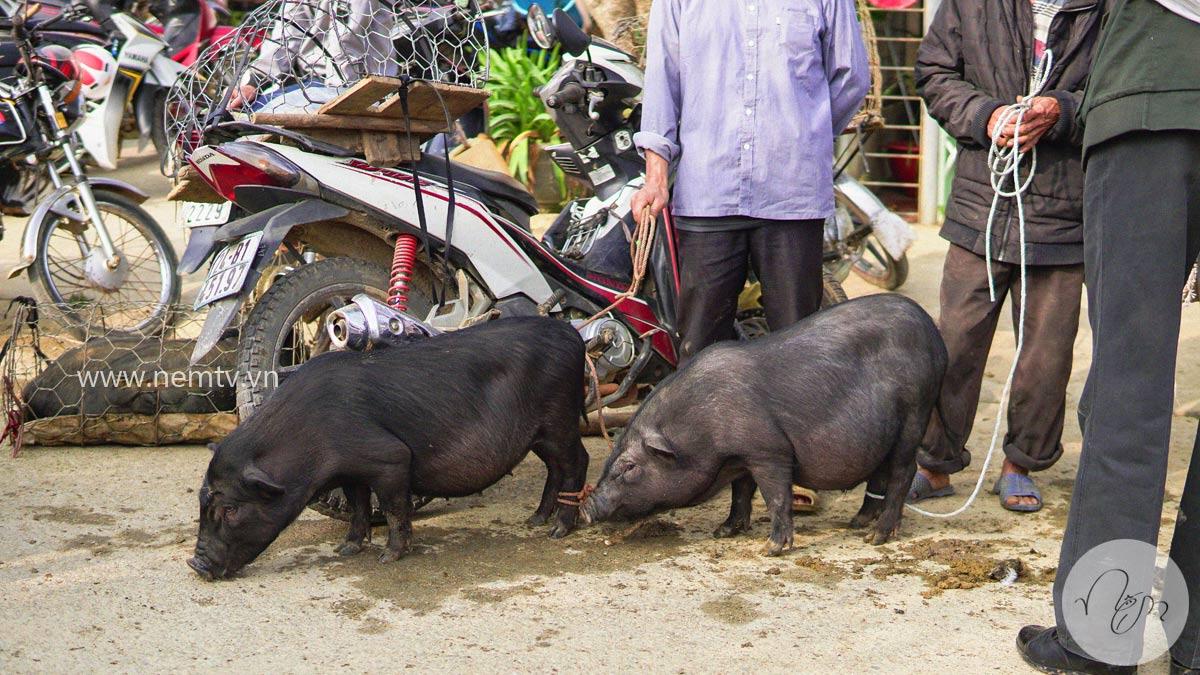 Chợ Bắc Hà Lào Cai 22