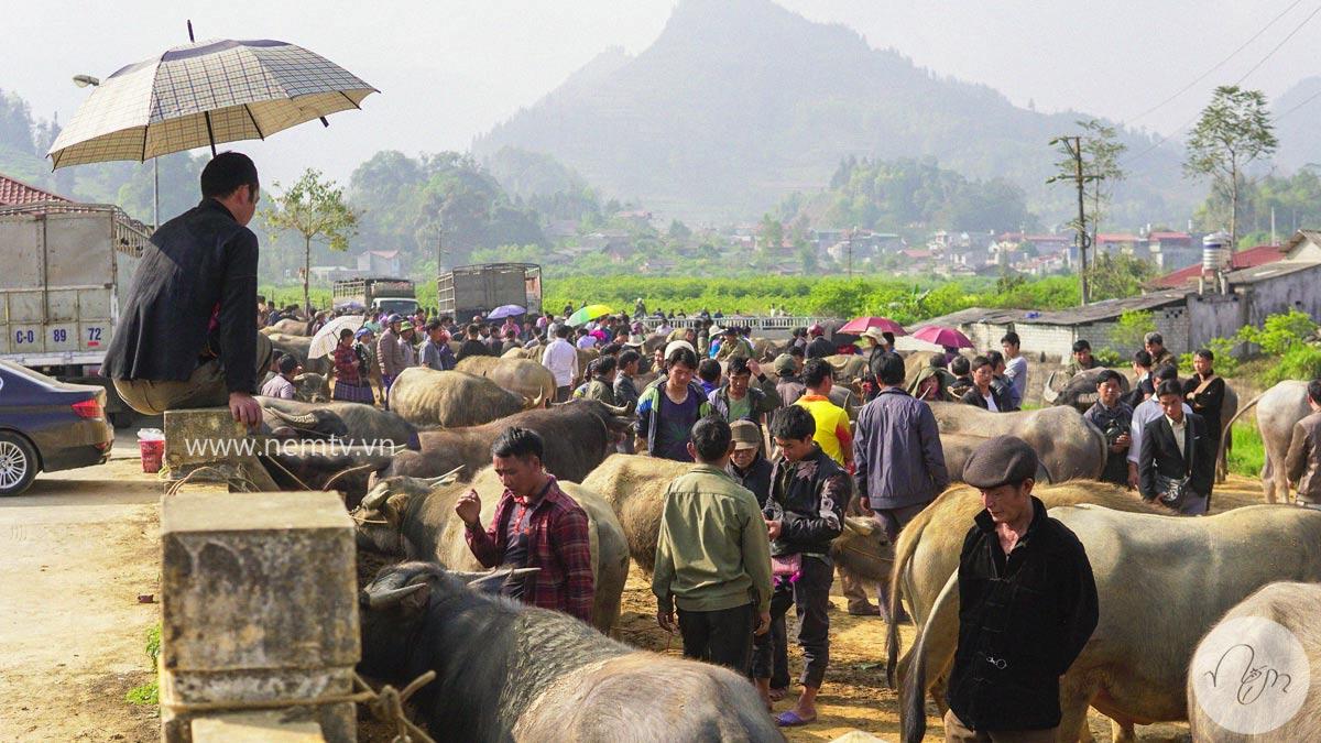 Chợ Bắc Hà Lào Cai 26