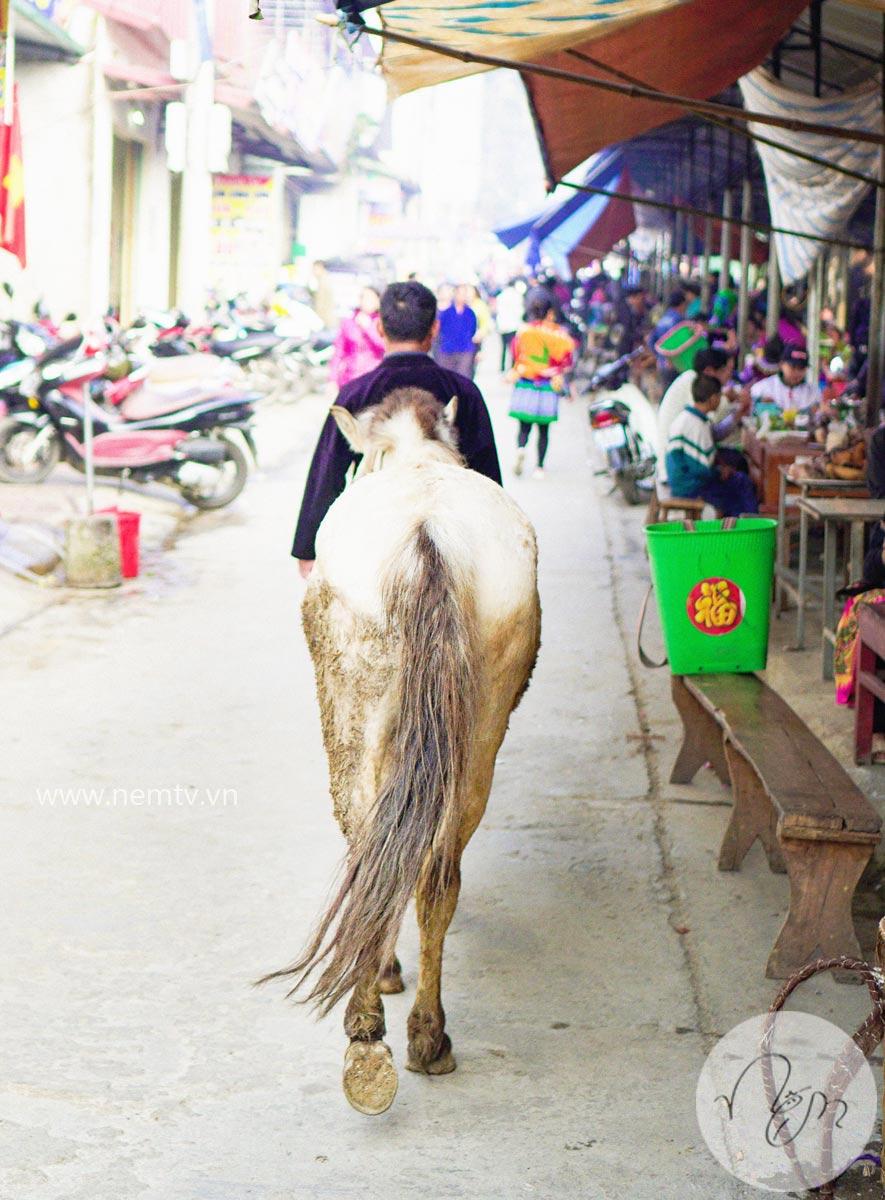 Chợ Bắc Hà Lào Cai 44