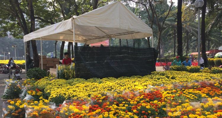 Công viên Lê Văn Tám - chợ