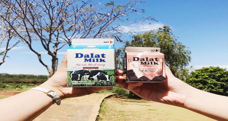 Đà Lạt Milk Farm - sản phẩm từ sữa