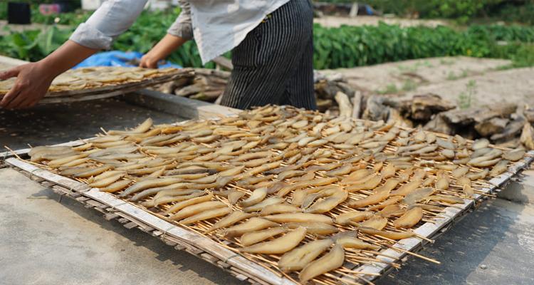 Đặc sản Quảng Bình - khoai