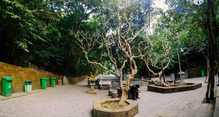Đền Hùng Phú Thọ nơi nghỉ chân
