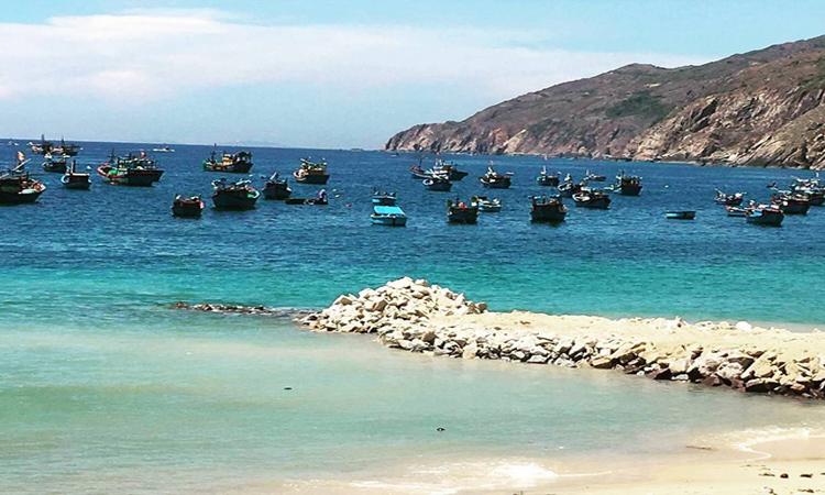 Du lịch Quy Nhơn - biển đẹp