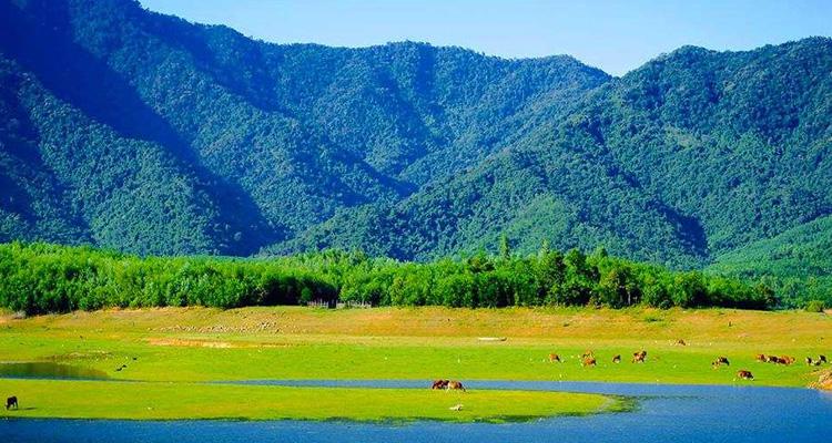 Hồ Hòa Trung 01