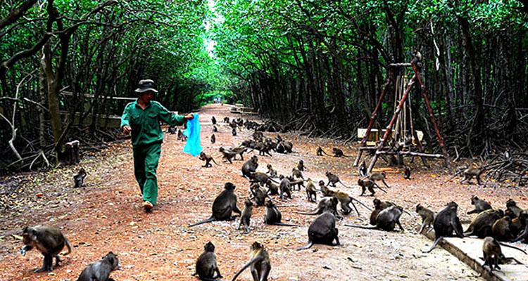 Khu du lịch Văn Thánh - đảo khỉ