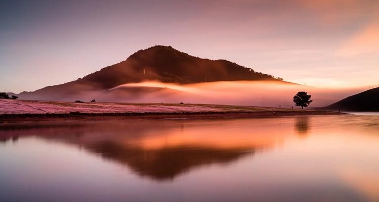 Kinh nghiệm du lịch Đà Lạt hồ suối vàng