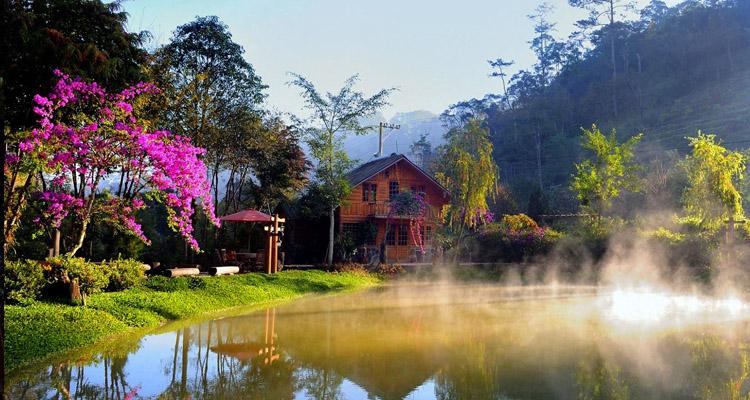Kinh nghiệm du lịch Đà Lạt ma rừng lữ quán