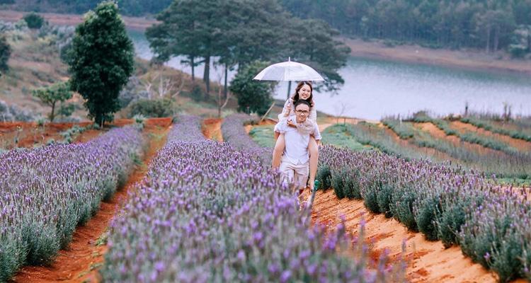 Kinh nghiệm du lịch Đà Lạt vườn hoa đà lạt