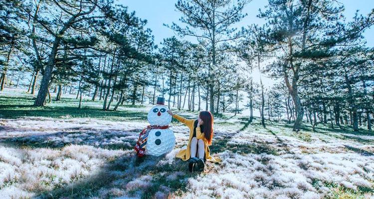 Kinh nghiệm du lịch Đà Lạt đồi cỏ tuyết