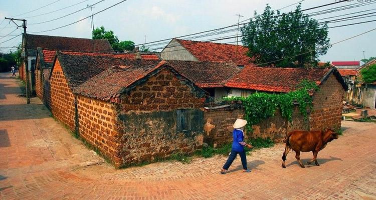Kinh nghiệm du lịch Hà Nội làng cổ đường lâm