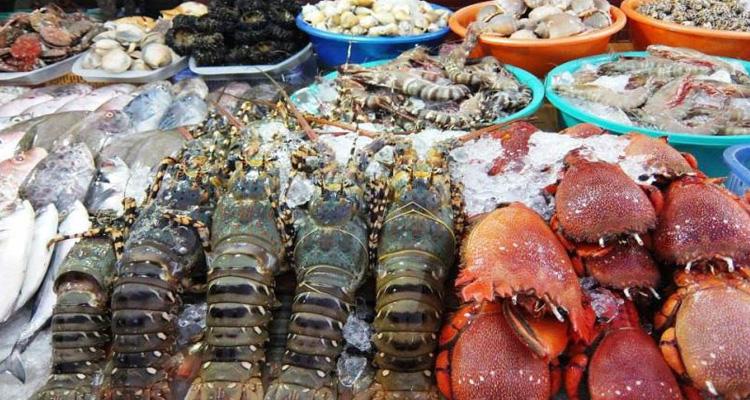 Lagi Bình Thuận 19