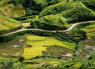 Sìn Hồ Lai Châu 1