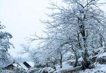 du lịch Sapa mùa đông 1