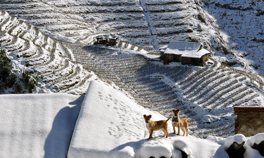 du lịch Sapa mùa đông 5