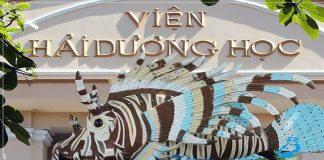 Viện Hải dương học ở Nha Trang có gì? Giá vé Viện Hải dương học năm 2019