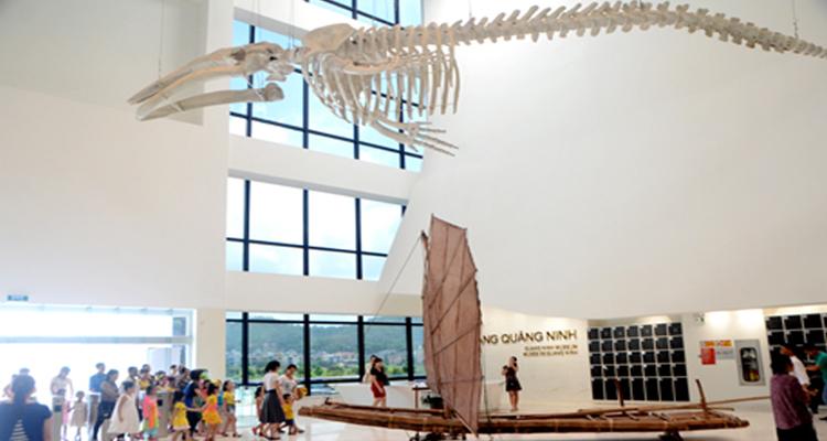 Vinpearl Hạ Long - bảo tàng quảng ninh
