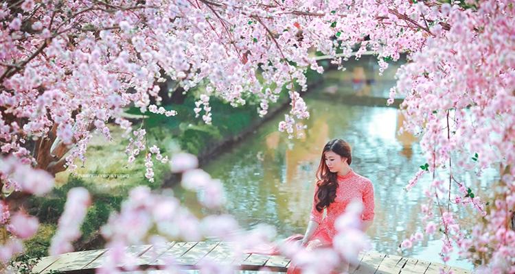Vườn hoa Bãi đá sông Hồng 1