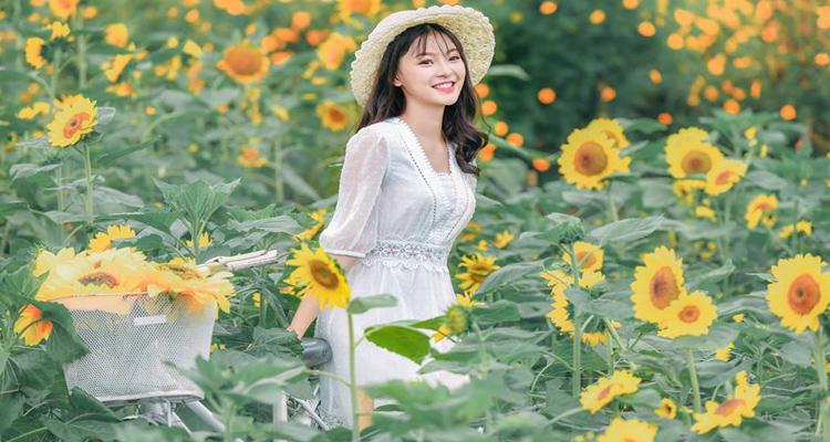 Vườn hoa Bãi đá sông Hồng 2