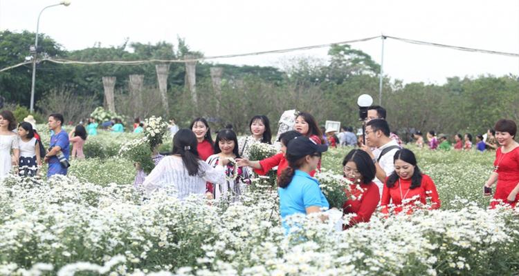 Vườn hoa Bãi đá sông Hồng 7