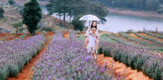 Vườn hoa Đà Lạt 1
